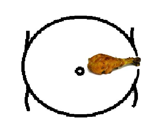 belly06