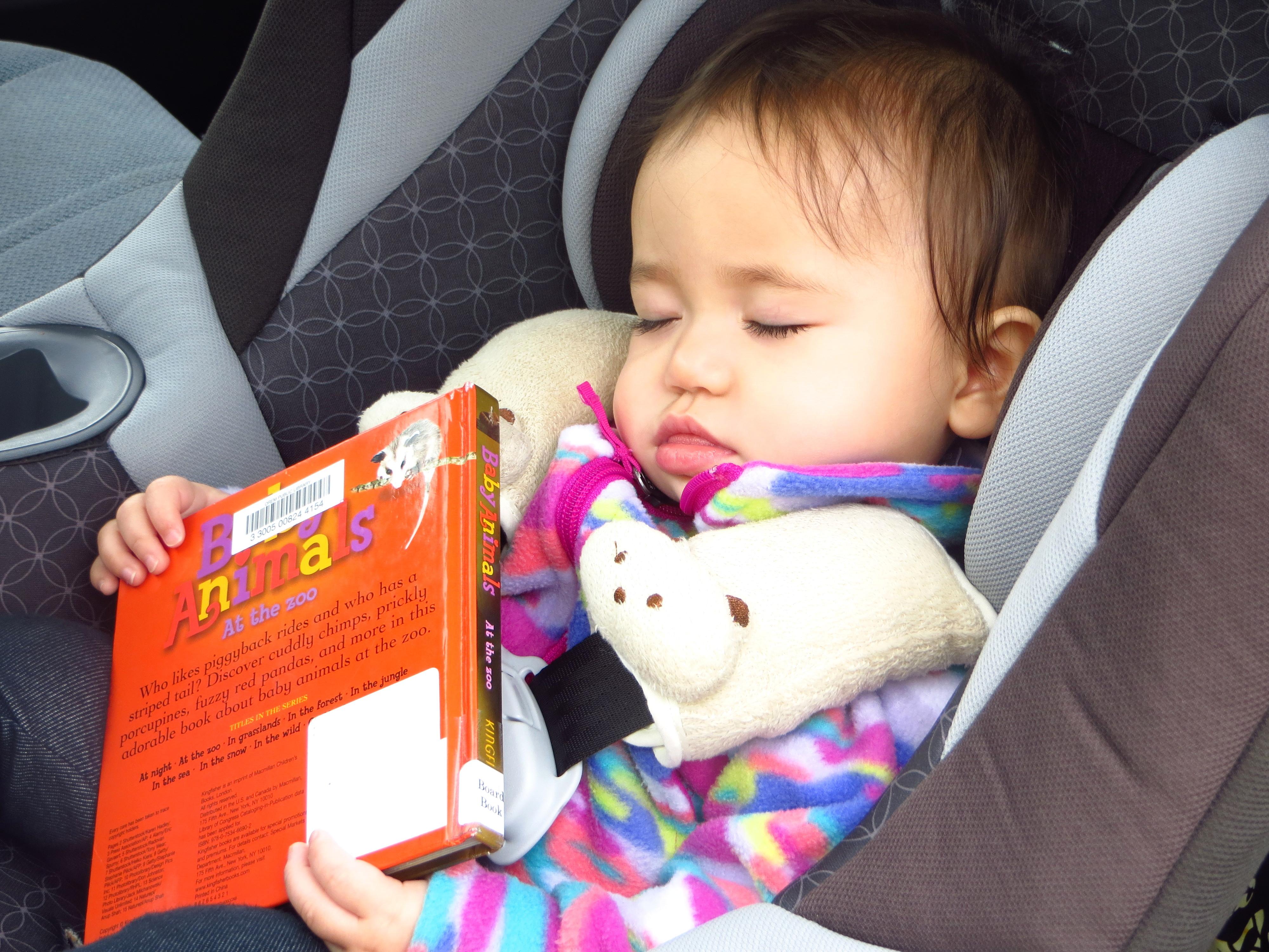 Sleepy book